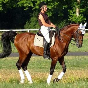 slide_cheval_1
