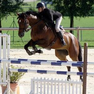 slide_cheval_2