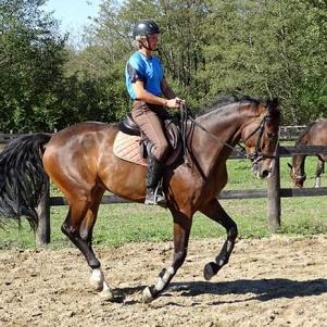 slide_cheval_3